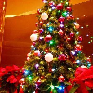 館内クリスマスツリー-ブログ用
